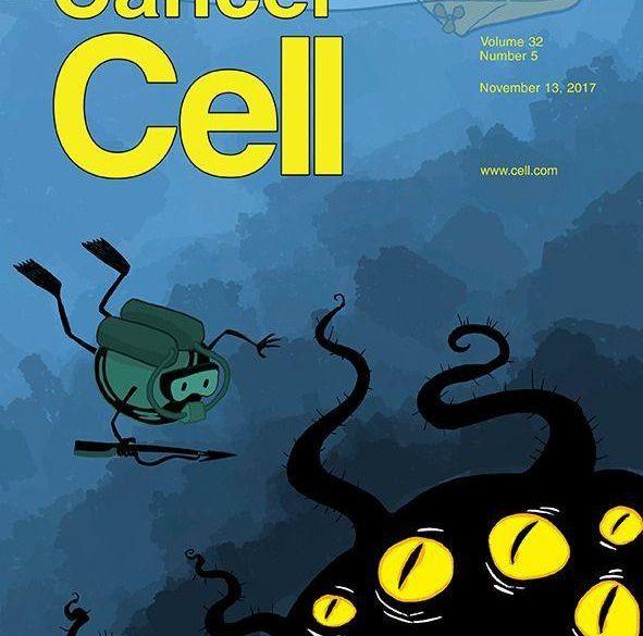 مجله Cancer Cell ویژه مقالات سرطان در سطح سلولی