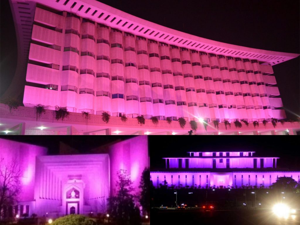 pakistani buldings are pink
